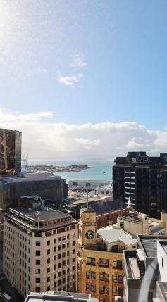 Wellington (11)